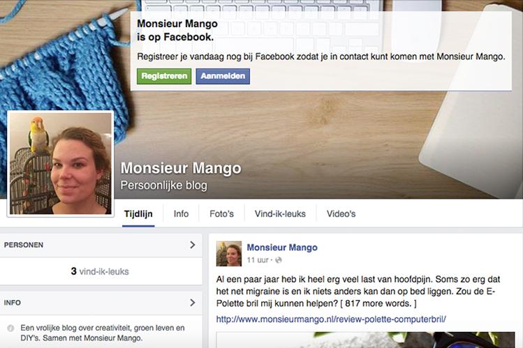 Afbeelding Facebook monsieur mango