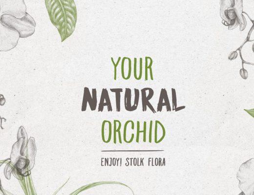 Afbeelding natuurlijke orchideeën