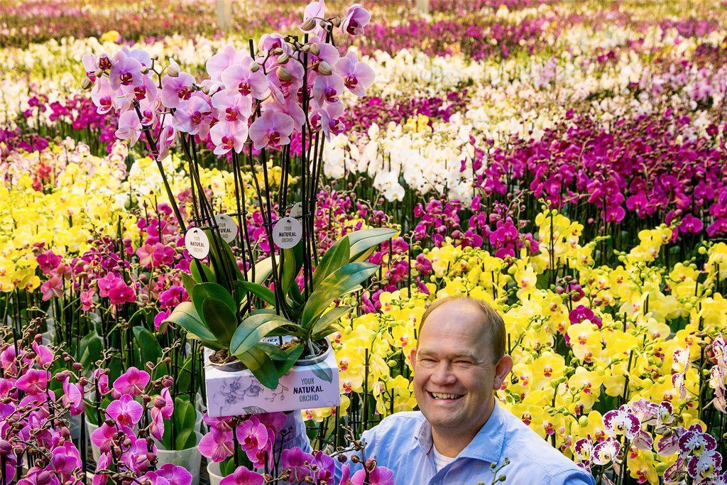 Afbeelding natuurlijke orchideeën met Jan Stolk
