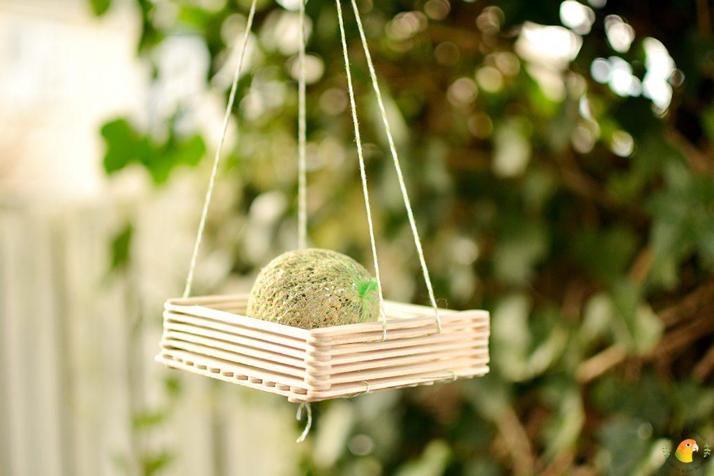 Afbeelding DIY vogelvoerder met vetbolletje