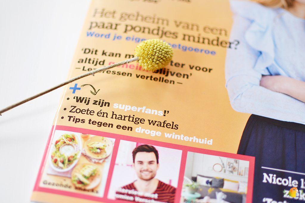 Afbeelding tijdschrift Vriendin close-up superfans