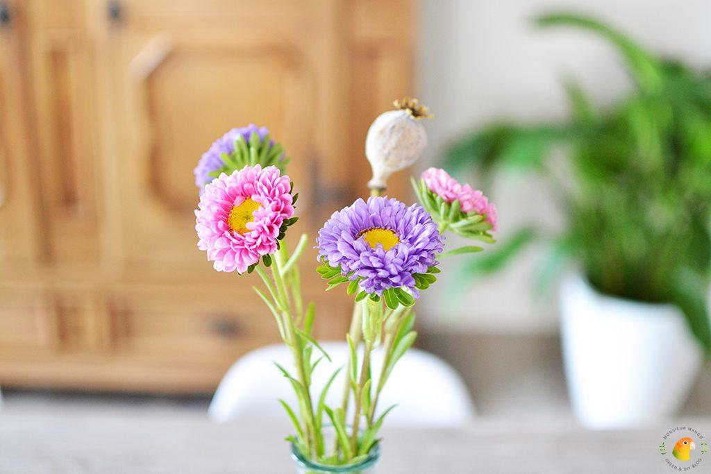 Afbeelding gekleurde bloemen