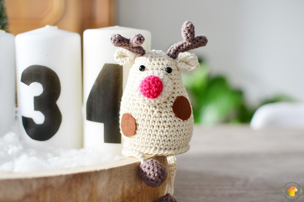 DIY Adventskaarsen maken Rex wil ook op de foto