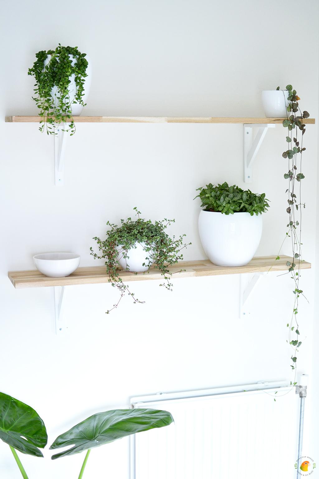 Scandinavische woonitems |  Plantenwand