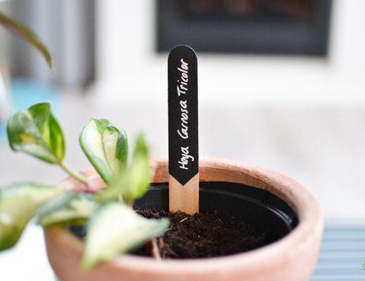 DIY Plantenbordjes maken