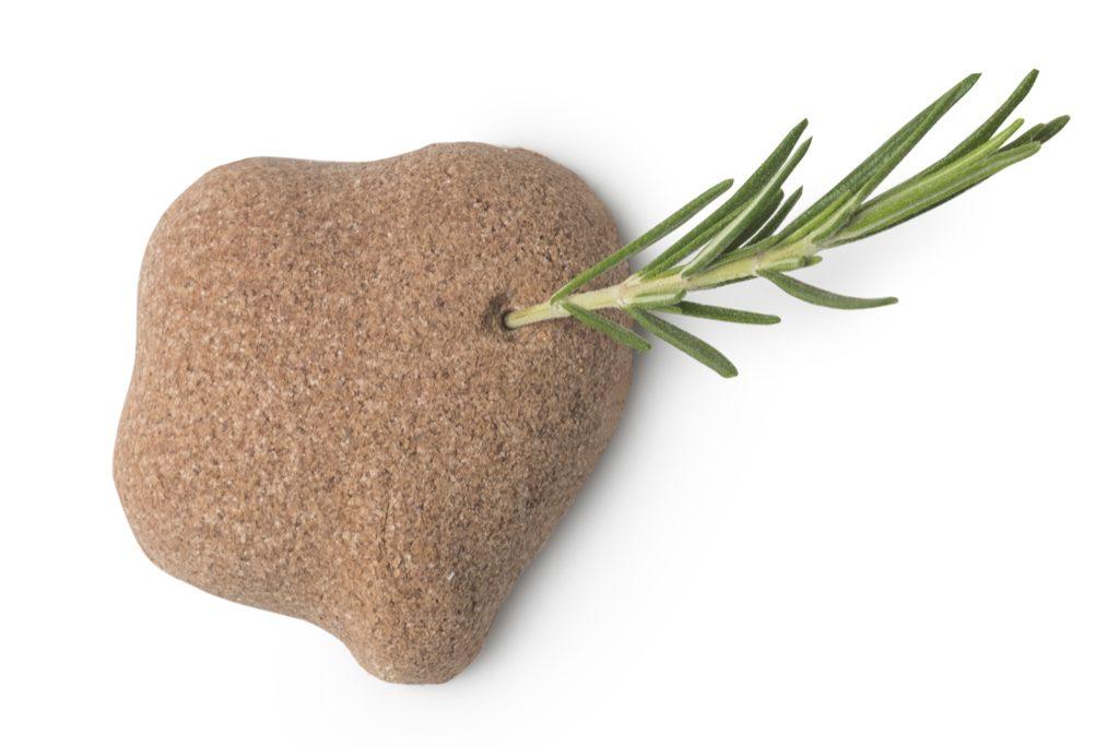 Lush Valentijnscollectie 2019 Love Island sugar scrub