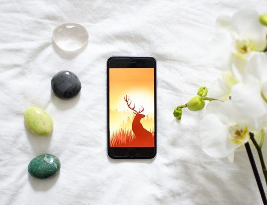 Wildfulness 2: een meditatie en mindfulness app
